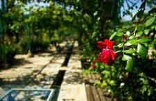 Wycieczki fakultatywne w Bułgarii: Dolina Róż i Trackich Królów, Szipka | Opinie | Ceny