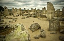 Wycieczki fakultatywne w Bułgarii: Delfinarium w Warnie, Kamienny Las | Opinie | Ceny