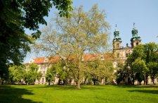Więcej niż Wrocław. Zobacz największe atrakcje turystyczne w okolicach Wrocławia