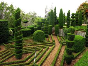 ogród botaniczny funchal