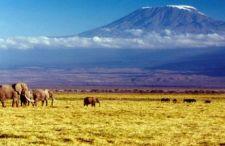 Kolejny kraj Afrykański. Odwiedź pierwotną metę rajdu Dakar, loty do Senegalu już za 1069 zł.