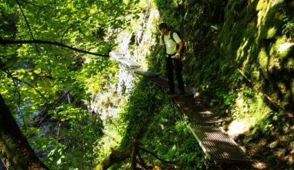 słowacki raj marcin