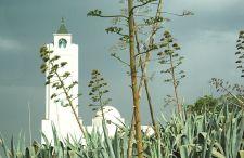 Cuda architektury #10 – Sidi Bou Said, czyli biało – niebieskie miasteczko założone przez hiszpańskich Maurów