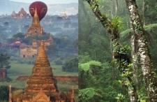Dżungla! Borneo za ok 2300zł czy Birma za 1941zł?