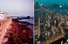 Anglia, Hiszpania, Jordania, Maroko śladem lokalizacji (lokacji) z filmów Ridleya Scotta
