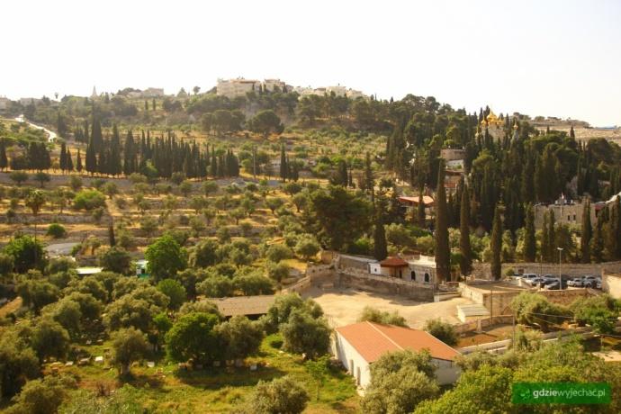 gora oliwna jerozolima