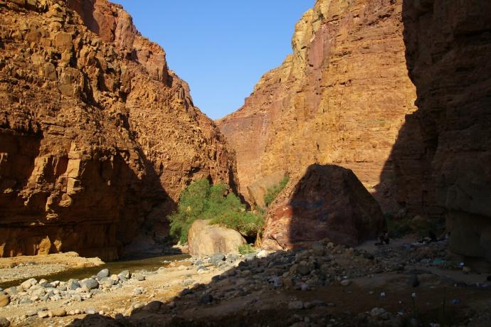 wadi zarka