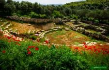 No to Grecja! Ateny, Saloniki i Chania