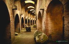 Kot w pustym Amfiteatrze, pot gladiatorów i ognista ziemia. Rzecz o Pozzuoli