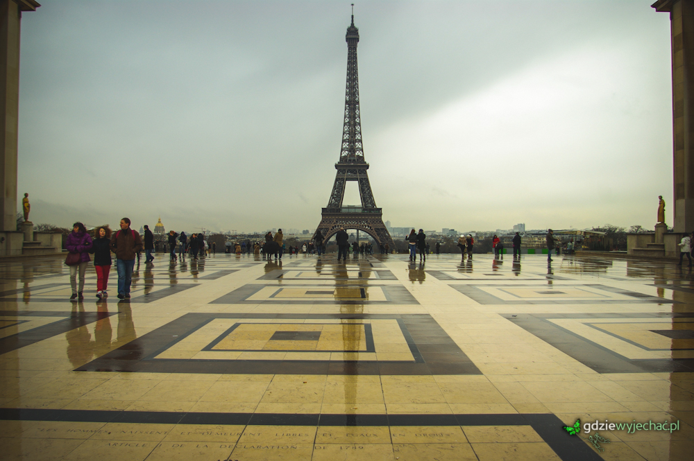 paryż wieża eifflea