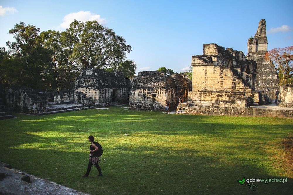 Tikal w Gwatemali