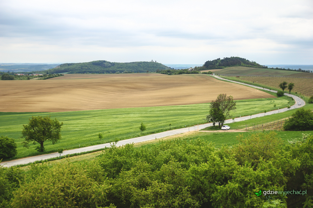 Morawy pola krajobraz