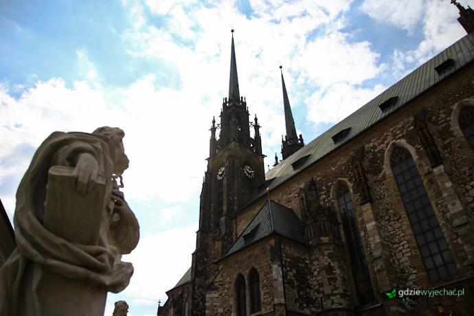 katedra brno