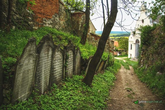 Cmentarz zydowski mikulow