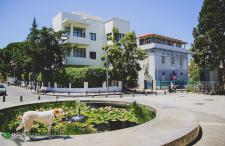 Biało Miasto w Tel Avivie. A może akurat Cię zainteresuje…