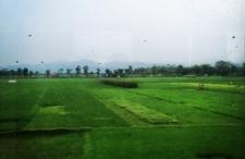 Kolejami indonezyjskimi wzdłuż Jawy