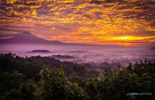 Motylanezja: 7 zaskoczeń i 7 zachwytów tuż po powrocie [+KLIP]