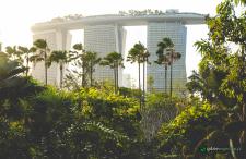 Kosmiczne ogrody w Singapurze. Coś, co musi się podobać!