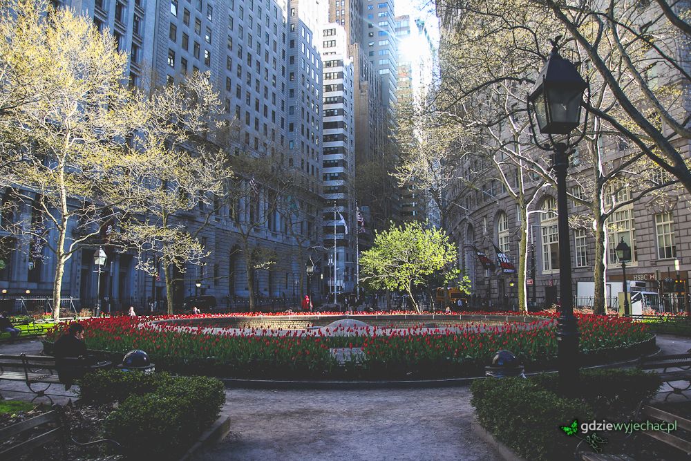 Bowling Circle. śmieszna nazwa uroczego skweru na końcu zielonej linii metra. Tulipanów w NYC sporo - to pamiątka po NowymAmsterdamie?