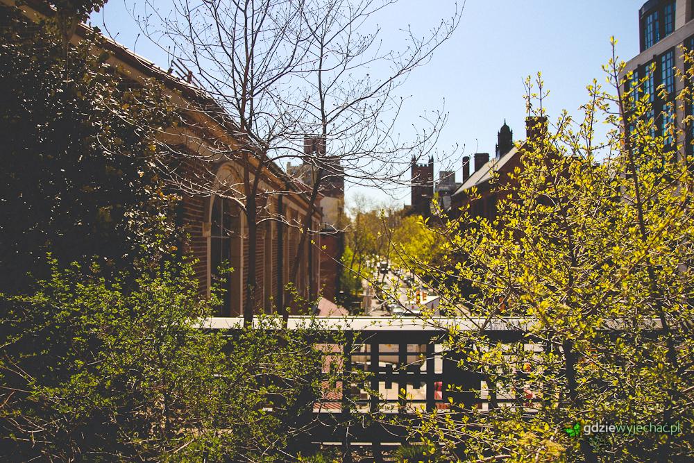 Drzewa zielenią się w Highlane, nietypowym parku, założonym na dawnej linii kolejowej