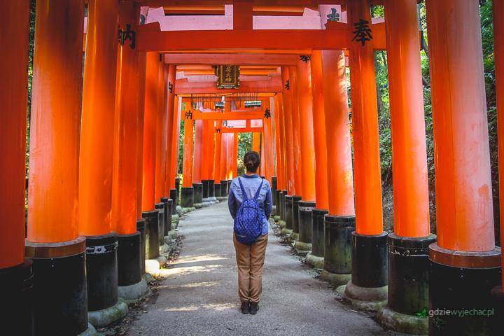 Fushimi Inari Kyoto Japonia