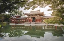 Złoty Budda i feniksy w Uji. Krótka wycieczka poza Kioto.