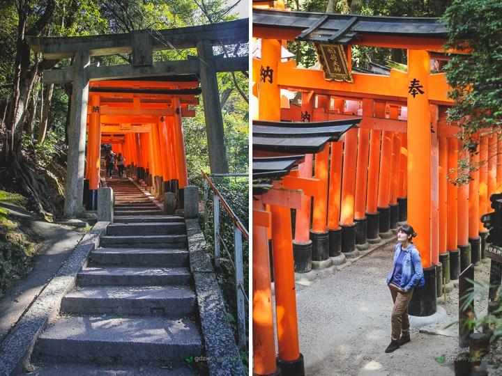 fushimi inari swiatynia kioto