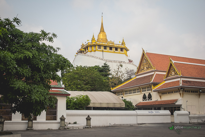 złota gora bangkok