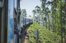 Pociągiem do krainy herbaty. Soczyście zielona Nuwara Elija i Hill Country