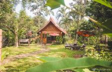 Północna Tajlandia, Chiang Dao. Jak zamieszkaliśmy na farmie pośród mango