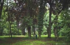 Podróżuj Do Tutaj: Zielony Bytom i jego równie zielone okolice