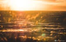 Zatopiony Las, klify w Dębinie, Czołpino i Rowokół. Tajemnicze wybrzeże Bałtyku